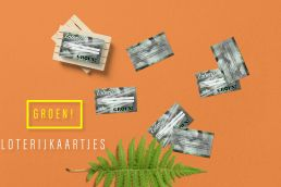 Lottery tickets on a mango colored background